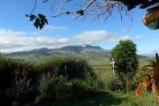 Beautiful, lush Ecuador
