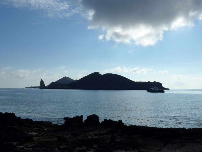 Good morning Galapagos!