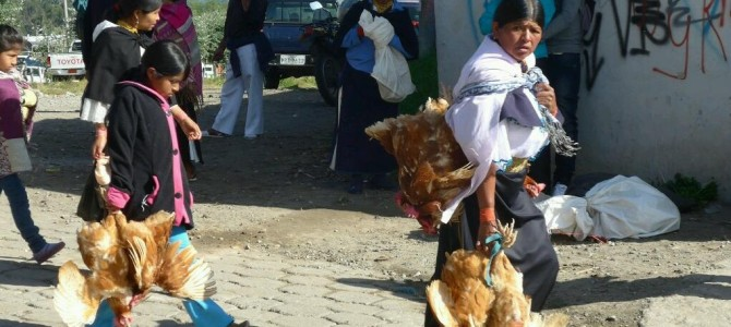 Marketing in Otavalo