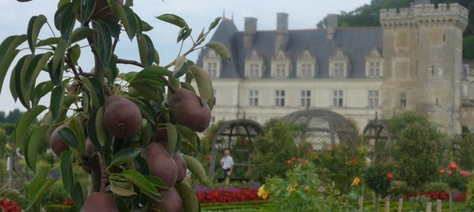 La Loire a Velo